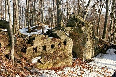 Zřícenina hradu Rožnov