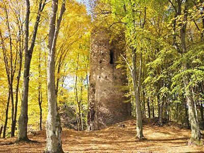 Zřícenina hradu Chřenovice