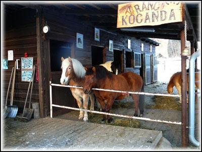 Zdroj: www.ranckocanda.estranky.cz