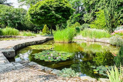 Botanická záhrada Bratislava