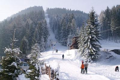 Ski Javorovica