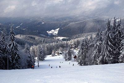 Zóna Snow